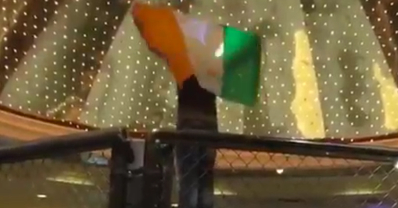 Conor McGregor Fan Over Celebrates And Gets Thrown Out Of MGM