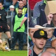 A pitch-invading dog, a pop superstar, and 'box man': The weekend in GAA tweets