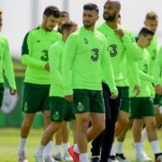 Shane Long out of Ireland squad after suffering hamstring injury in training