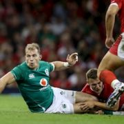 Here's the player ratings as Ireland defeated Wales in Cardiff