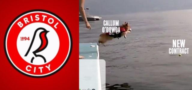WATCH: Bristol City release brilliant Callum O'Dowda contract extension video