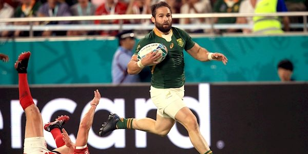 #RWC2019 Newsletter: Sobering stats for Irish camp as Boks run in 10 tries