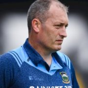 New Waterford hurling manager drops Connors and Shanahan from panel