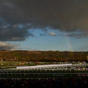 First day of Cheltenham's November meeting abandoned following heavy rain
