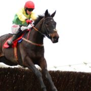 Sizing John on target for Irish Gold Cup