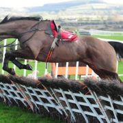 Harrington keeping Sizing John options open after Punchestown fall