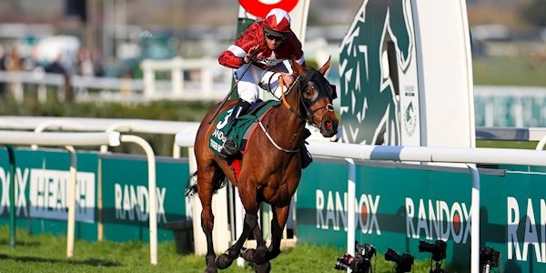 Tiger Roll given Grand National go-ahead