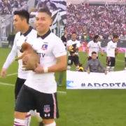 WATCH: Chilean Club Colo-Colo Had Players Walk Onto The Pitch With Dogs Available For Adoption As Mascots